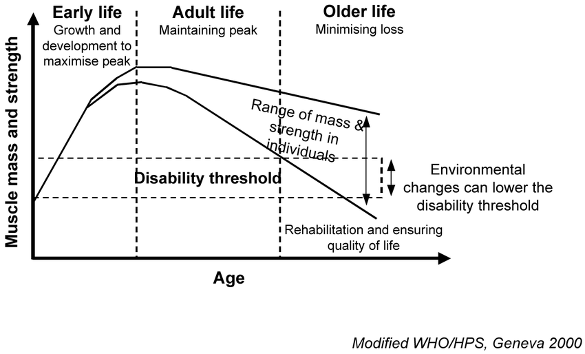 A-life-course-model-of-sarcopenia